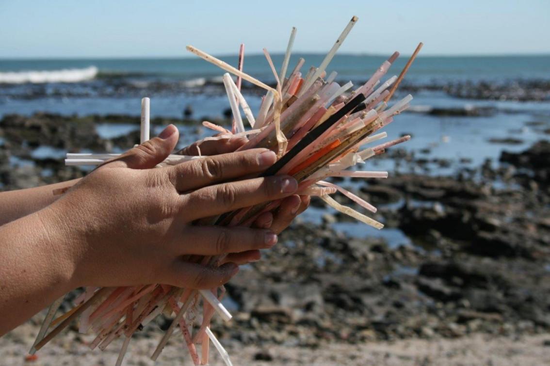 Mỗi ngày hàng triệu ống hút thựa thải ra biển